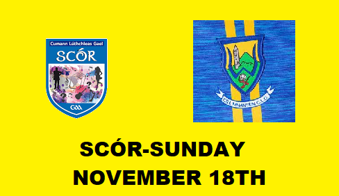 Wicklow GAA invites you to 50 years celebration of Scór.