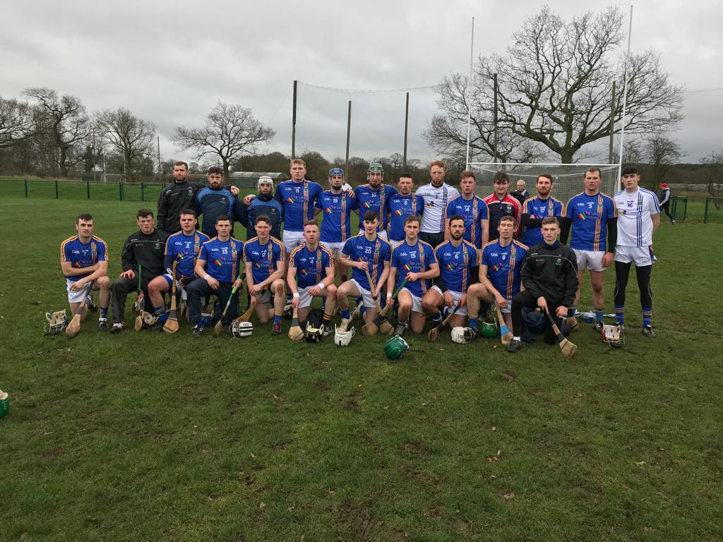 Wicklow Hurlers take victory in Birmingham